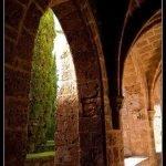 Las ruinas del Monasterio de Piedra de Nuévalos