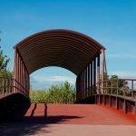 Photowalk otoñal por el parque de la solidaridad de Fuenlabrada