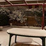 Fotos de la Nevada de Enero 2010 en Pinto