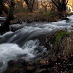 La belleza del río Manzanares