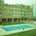 39/365 Hoy es de esos días de quedarse en casa mirando por la ventana