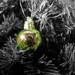 111/365 Es tiempo de Navidad