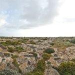 227/365 Los acantilados de la isla de Gozo en el archipiélago Maltés