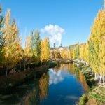 El río Tajo a su paso por Trillo