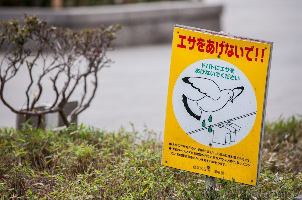 Carteles curiosos de Japón