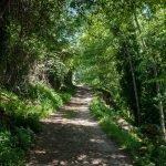 El entorno del Puente de El Salvador en Garganta de la Olla