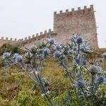 El Castillo de Argüeso en la comarca de Campoo, Cantabria