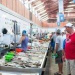 Visita al mercado de Olhão