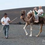 Echadero de los Camellos en Timanfaya, Lanzarote