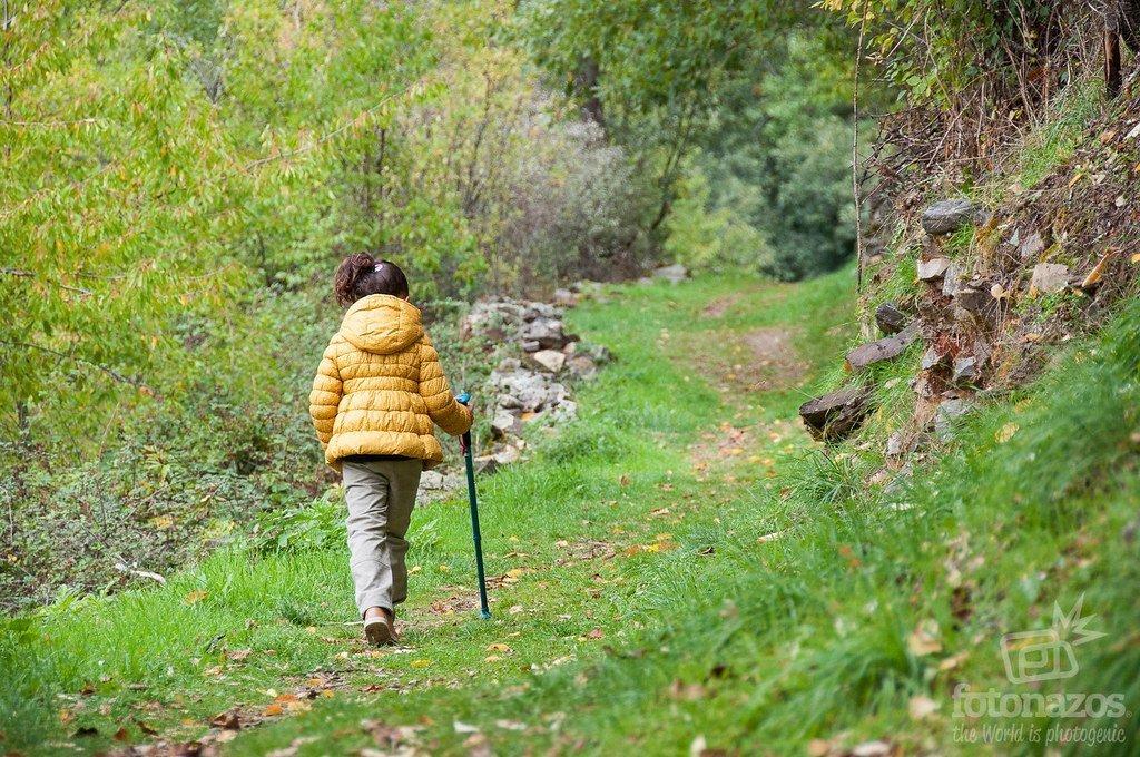 Senda por los Robles Centenarios de Puebla de la Sierra