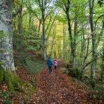 Ruta a la Cascada de las Pisas – Las Merindades – Burgos