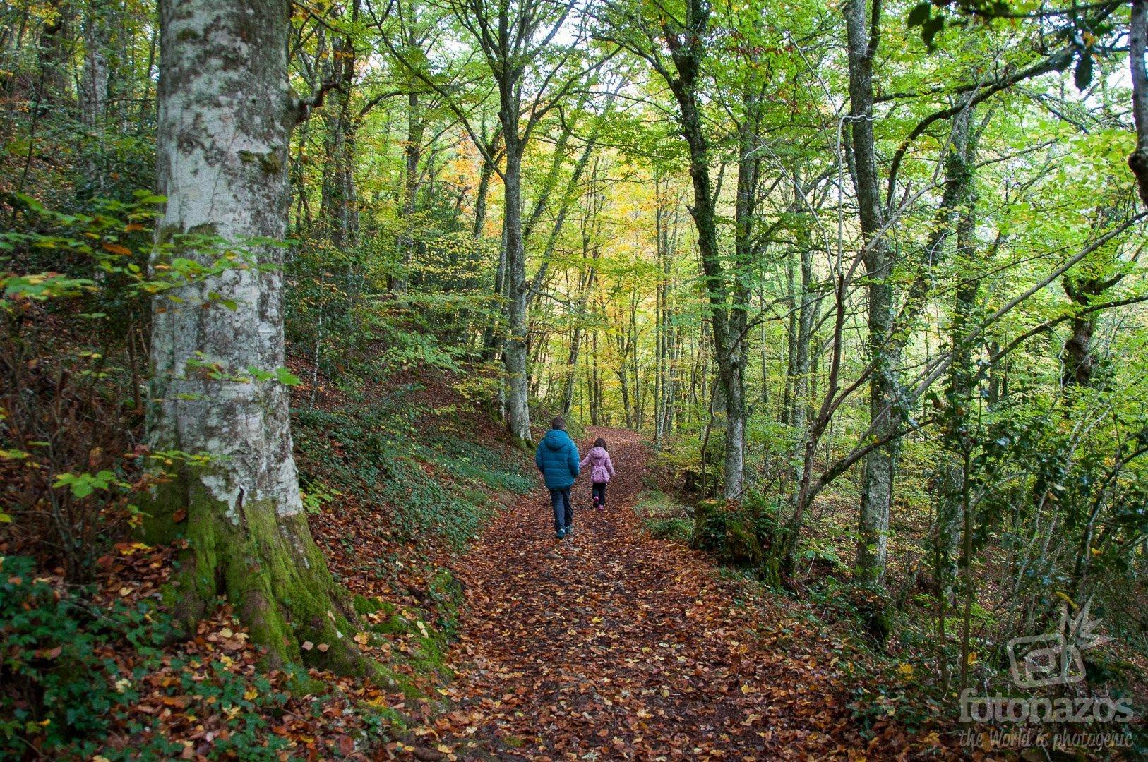 Ruta a la Cascada de las Pisas - Las Merindades - Burgos