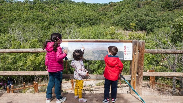 Ruta por el Bosque de Valdenazar en Yebes – Guadalajara