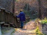 Senda El Forestal – Prado Redondo en Villaviciosa de Odón