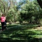 Senda y Área Recreativa El Sotillo en Villaviciosa de Odón